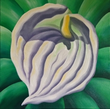 Painting O'Keeffe-Style Flora using Cobra Solvent-Free Oils