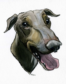 Animal Portraiture with Watercolour & Ink