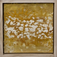 Encaustic, shellac, Mica Powder on wood