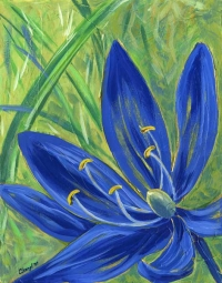 a native Camas flower in bloom, acrylic on canvas