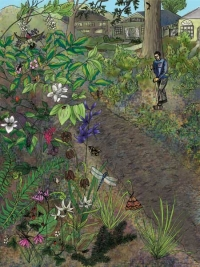 a mixed media illustration of a community native plant garden