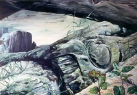 Oil Painting of a fallen totem pole at Skidans, Louise Island, QCI