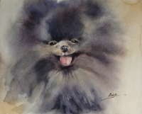 Teddy is a Pet Impression captured in watercolor