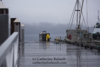 Fisherman on the wharf, in Fanny Bay