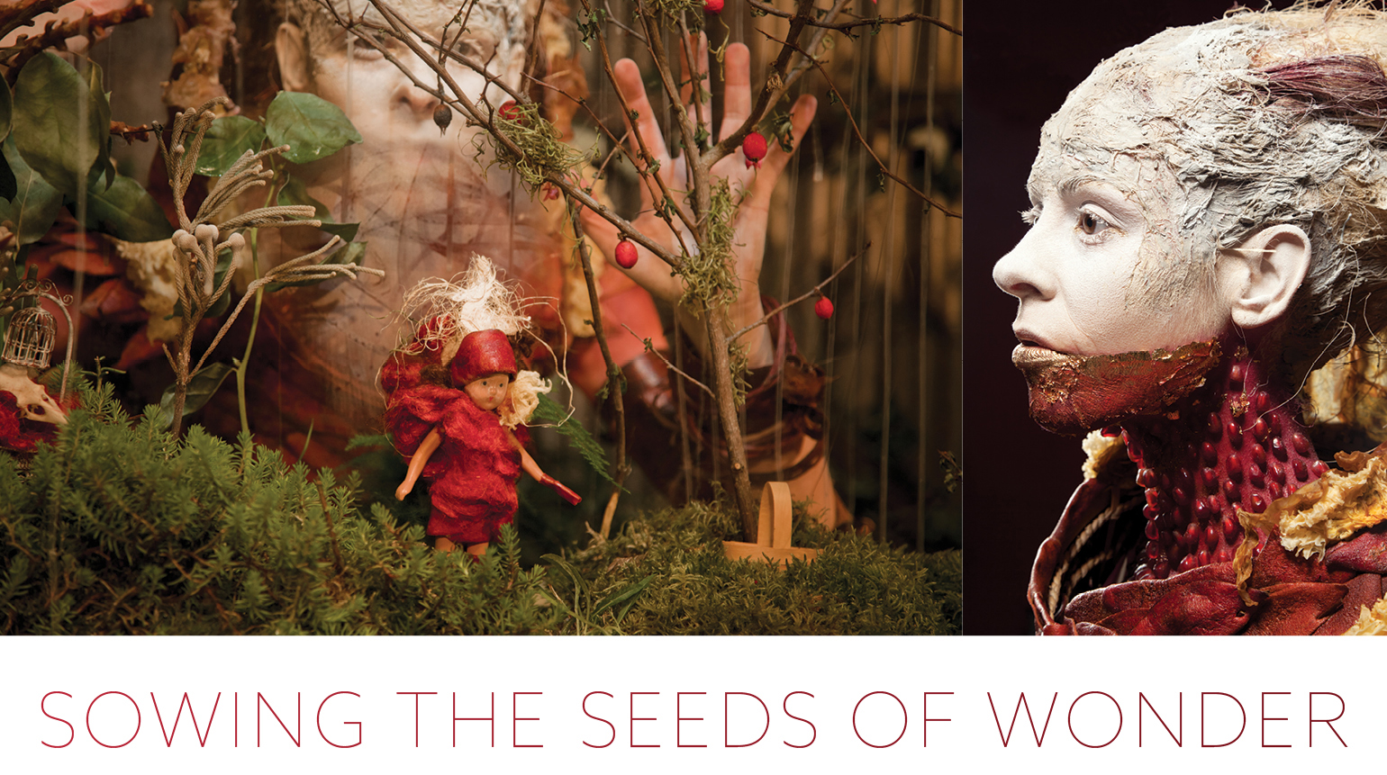 Sowing the Seeds of Wonder