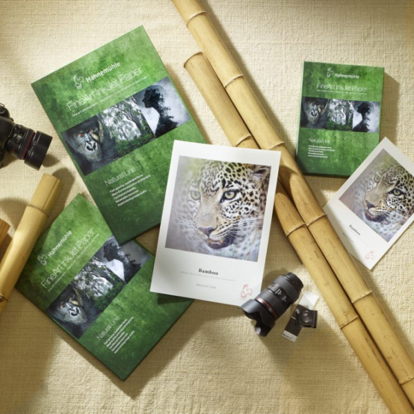 Sustainability at Hahnemühle and Bamboo Paper for Digital Printing